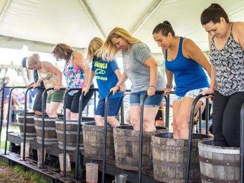 Sip Your Way Through Lake County on a Wine & Brews Tour