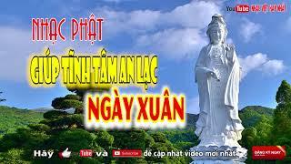 Nhạc Phật Giáo Tĩnh Tâm An Lạc Ngày Đầu Xuân | Giúp Con Người An Nhiên Tự Tại