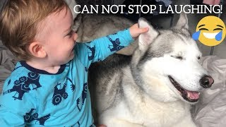 BABY SCREAMS WITH LAUGHTER EVERYTIME HE TOUCHES DOG EARS! [CUTEST VIDEO EVER!!]
