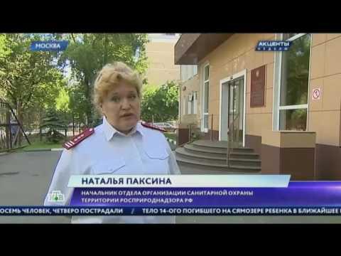 Россиянам предложили застраховать себя от укусов клещей