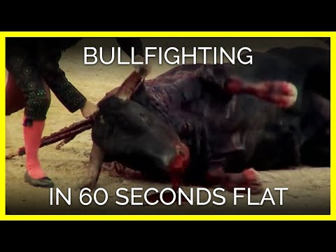 Bullfighting in 60 Seconds Flat