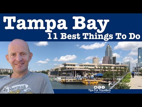 11 Very Best Things to Do in Tampa Florida