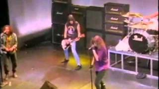 Watch Ramones Any Way You Want It video