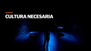 """Cultura necesaria"", la nueva miniserie audiovisual de VOS"