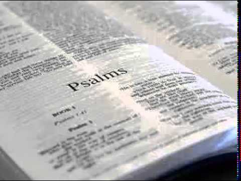 Psalms 119 - New International Version NIV Dramatized Audio Bible