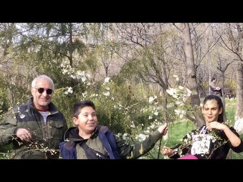 Yerevan, 16.04.20, Th, Or 22-rd, Handipum Masivum :), Video-2.