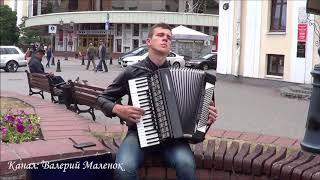 ОШИБКА! красивый французский вальс на аккордеоне! Brest! Music!