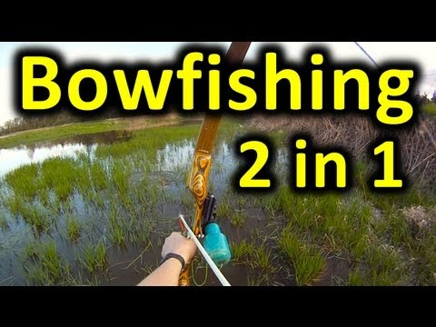 TWO FISH WITH ONE ARROW!!! Bowfishing's Juicy Double! + My DIY Recurve Bow Build Bingham Projects