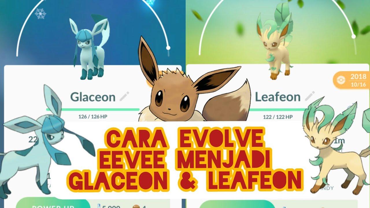 Cara Evolve Eevee Menjadi Leafeon Glaceon Di Pokemon Go Youtube