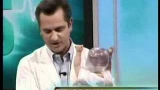 The Doctors demonstrate RealCare Shaken Baby