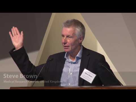 Steve Brown: Comprehensive phenotyping of the mouse genome