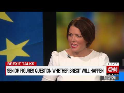 CNN TWRN Sir Vince Cable Brexit interview 18th July 2017