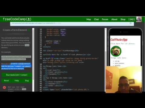 Create A Form Element, FreeCodeCamp Review Html & Css, Lesson 29