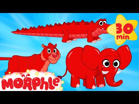 Thumbnail: Cute Scary Animal Videos With Morphle - My Pet Tiger, My Pet Crocodile, My Pet Elephant