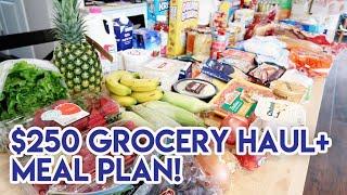 $250 GROCERY HAUL + MEAL PLAN! 🛒 WALMART HAUL + HYVEE HAUL 🍽 FAMILY OF FOUR