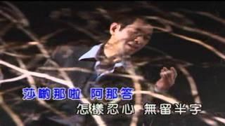 蔡小虎-鑽石手指   菁音.