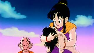 Chichi doesnt care about Goku but Bulma does - DBZ