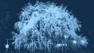 混声合唱組曲「幼年連祷」 1.花―新実徳英