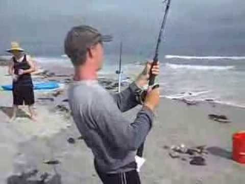 Ponce inlet fishing youtube for Ponce inlet fishing