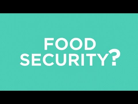What is food security?