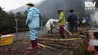 古代布・太布の糸づくり始まる 徳島・那賀町 国重要無形民俗文化財