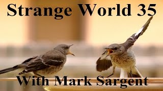 Flat Earth debate review and mail bag - SW35 - Mark Sargent ✅