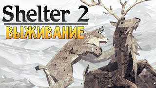 Shelter 2 - СИМУЛЯТОР РЫСИ (Рысята Выросли)