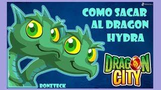 como sacar al dragon hidra hydra dragon dragon city