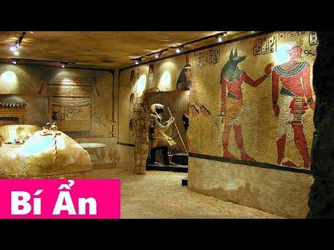 Bí Ẩn Lời Nguyền Xác Ướp Pharaoh Ai Cập