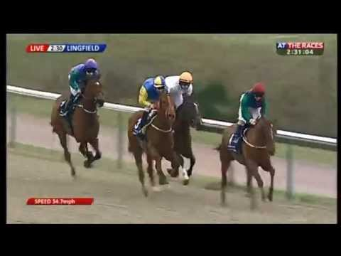 1/20 shot Triple Dip gets beaten at Lingfield