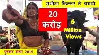 भीम भैसा की सुशीला किन्नर ने लगायी 20 करोड़ की बोली – Bheem Bull Price 20 Millions In Pushkar Mela