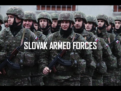 Slovak Armed Forces 2019