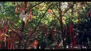 Lawn Dogs/Луговые собачки