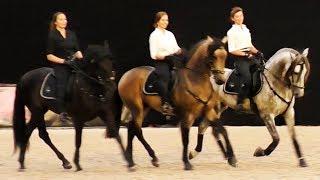 Потрясающе красивый испанский танец верхом на лошадях /Андалузская испанская лошадь /Иппосфера 2017
