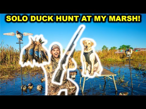 SOLO Duck Hunting My FLOODED MARSH at My FARM!!! Bonus Pigeon! (Catch Clean Cook)