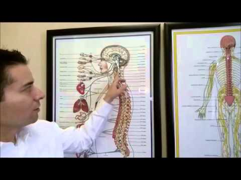 Dr. Calvin's Clinic  Part 3 Why  NECK PAIN West Valley City Salt Lake City Best Chiropractor