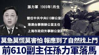 中共公安部副部長 前610副主任孫力軍落馬|新唐人亞太電視|20200420