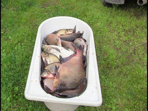 Запрет - Федеральное агентство по рыболовству