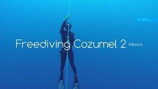 Freediving Cozumel! Фридайвинг на острове Косумель 2(Следующее видео из нашей фридайв поездки на затопленный минный тральщик USS Scuffle и дрейфующей плавучей базе..., 2015-05-20T17:52:22.000Z)