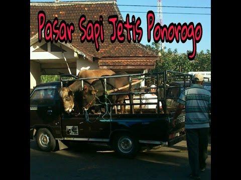 Pasar Sapi Jetis Ponorogo (Pasar Pahing)