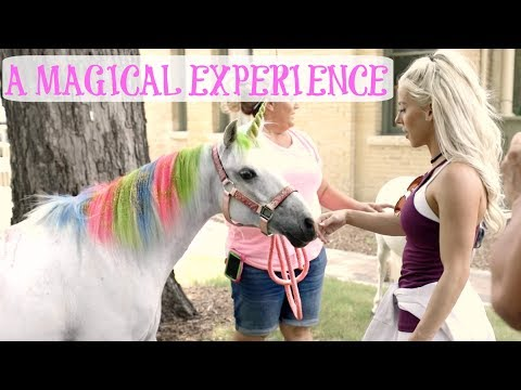 MEETING A UNICORN   EPIC Unicorn Themed Party