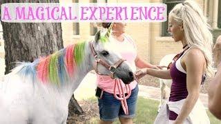 MEETING A UNICORN | EPIC Unicorn Themed Party