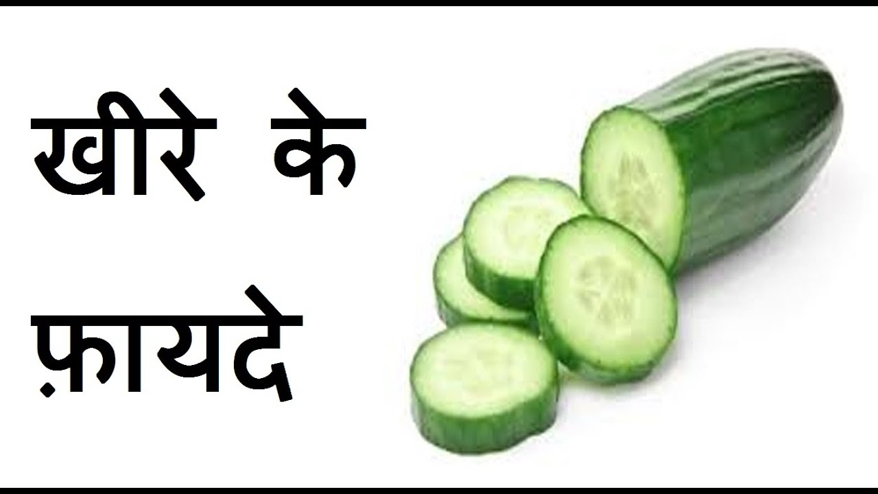Image result for cucumber in hindi
