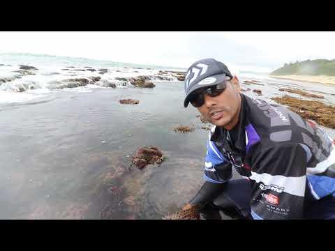 ASFN Fishing Vlog 0171 - Scratching Nyoggies - Zulu land