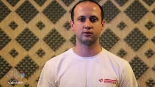 видео Цікаві факти про вольтера