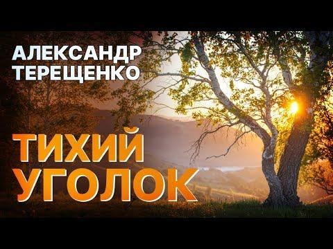 Песня ЗА ДУШУ БЕРЕТ! НАВЕЯЛА ВОСПОМИНАНИЯ🔥