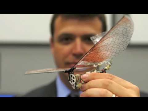 Amazing U.S. Surveillance Drones The Size Of Insects