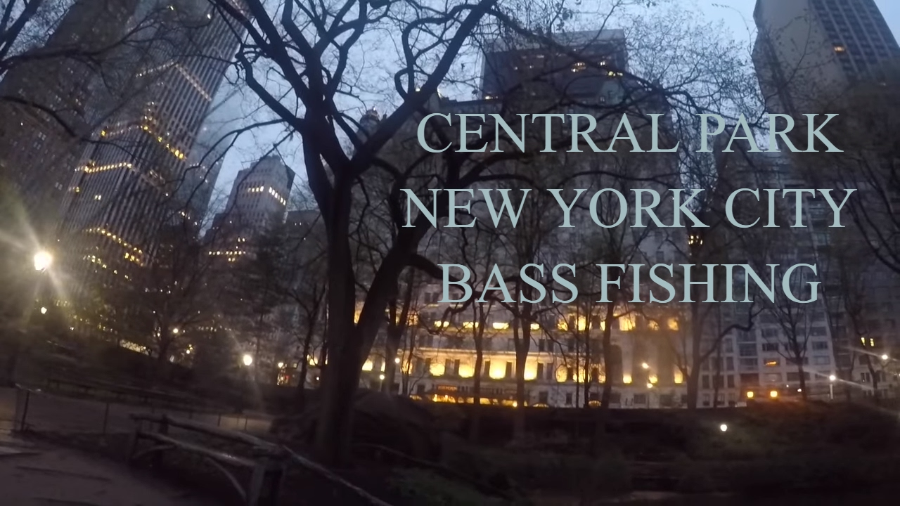 Central park new york city bass fishing youtube for Fishing in new york city