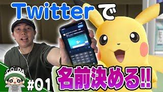 【ポケモン】視聴者も参加!Twitterで名前を全部決めてみた!コーダのポケットモンスター レッツゴー!ピカチュウ実況 Part1