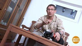 Дмитрий Талабуев иворотник для кошки. 23.05.2017